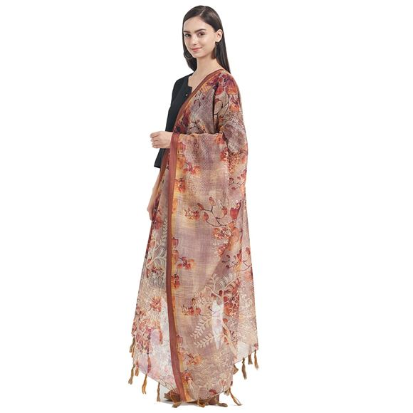 Chanderi Chikoo Color Designer Dupatta With Fancy Printed Work